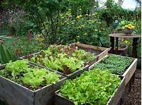 excellent edible garden design FoodScaping (Forney) - North Texas Municipal Water District