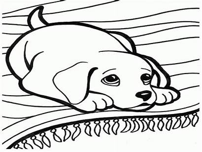 Dog Coloring Hunting Pages Opportunities Printable Getcolorings