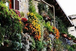 Bright Balcony Decorating with Flowers, 20 Blooming
