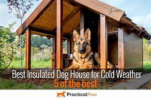 best 25 insulated dog houses ideas on pinterest With best insulated dog house for cold weather