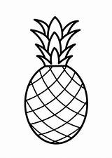 Pineapple Coloring Pages Drawing Printable Pernambuco Pale Template Colouring Fruit Print Sheets Drawings Templates Fruits Clipart Pattern Colornimbus Patterns Painting sketch template