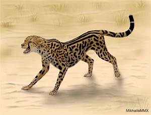 International King Cheetah Day by MikhailoMMX on DeviantArt