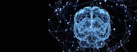 brain nerves  spine johns hopkins medicine