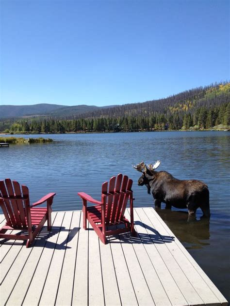 Canyon Lake Cabin Rentals With Boat Dock by Large Lakefront Log Cabin W Private Dock Perfect For