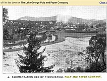 Image result for Mill POND SEWAGE Lake George