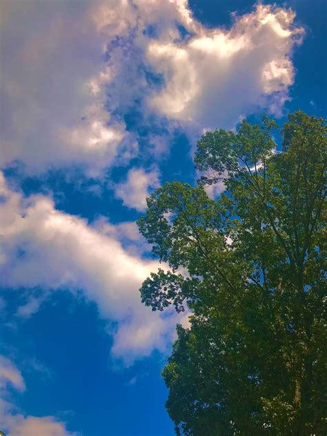 nature aesthetic sky aesthetic nature photography