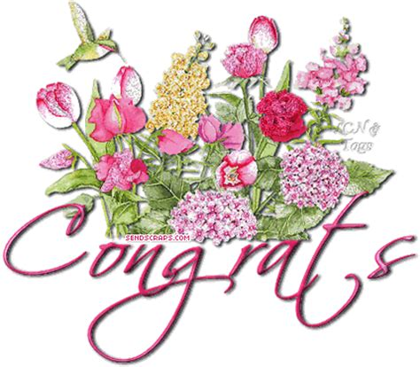 top  congratulations images   pictures