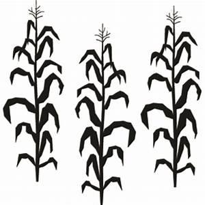 Corn Stalk Clip Art Many Interesting Cliparts