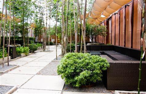 modern minimalist garden minimalist japanese garden minimalist garden backyard landscaping and minimalist