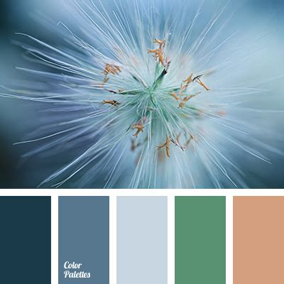 the selection of colors and palettes color palette ideas