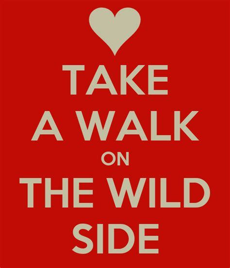 wild take walk side matic