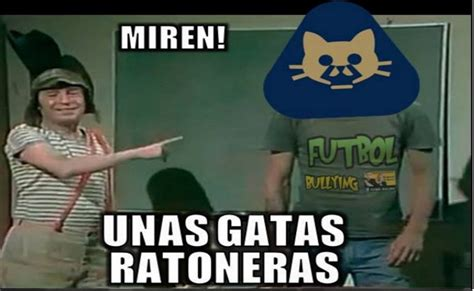 What Is Memes Memes De Pumas Imagenes Chistosas