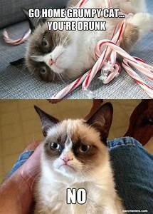 1000+ images about Grumpy Cat on Pinterest | My own ...