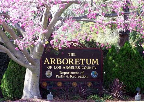 los angeles botanical gardens los angeles county arboretum botanical garden
