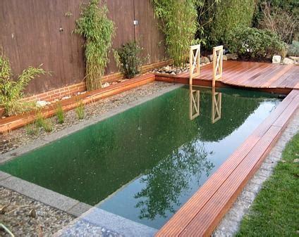 Schwimmteich Die Alternative Zum Pool by Schwimmteiche Nat 252 Rlicher Badespa 223