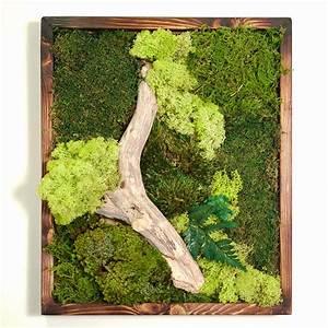 18x18 moss wall art dark frame real bodywork With moss wall art