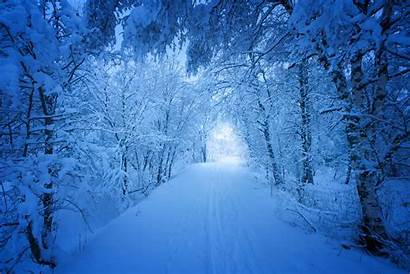 Road Snow Trees Covered Wallpapers Winter Nature
