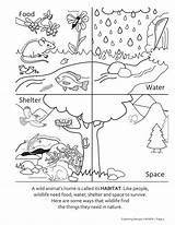 Dnr Sctlandtrust sketch template