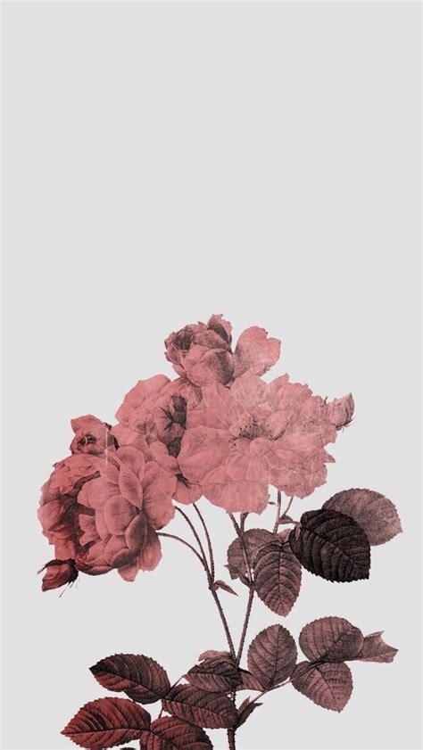 aesthetic background pink tumblr wallpaper wallpaper