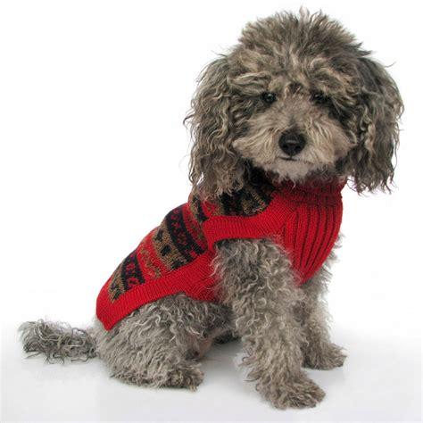 doge sweater splendor alpaca sweater breeds picture