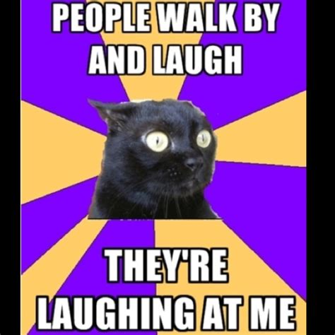 Anxiety Cat Memes - 47 best images about lol anxiety cat on pinterest anxiety cats and anxiety cat