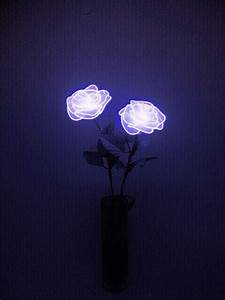I like the contrast of these glowing roses against the ...