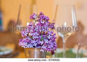 Blumen Im Frühling : lila blumen im fr hling blumenstrau in einer tasse auf einem tisch mit weingl sern in den ~ Orissabook.com Haus und Dekorationen