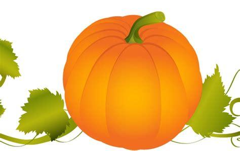 pumpkin vector graphic   hd icon resources