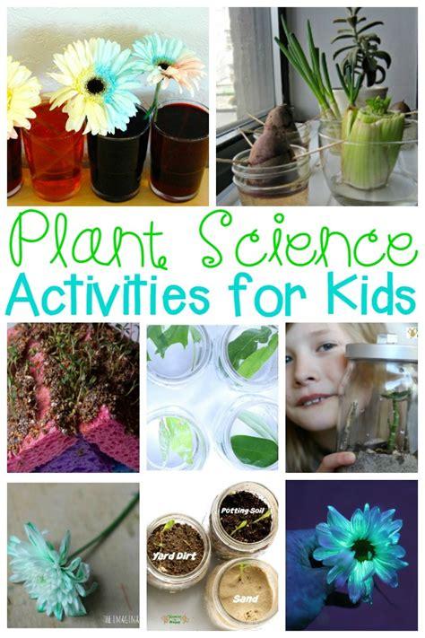 plant activities kids  love