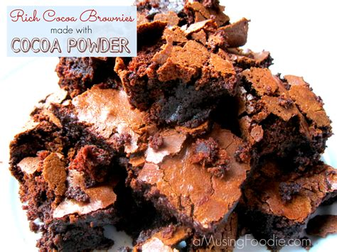 rich chewy cocoa brownies a musing foodie