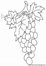 Uva Raisin Groente Traube Uvas Kleurplaten Disegni Panos Animaatjes Kleurplaat Ausmalbilder sketch template