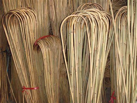 bamboo trellissticksu hoops