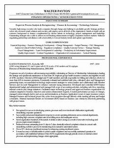 executive resume template e commercewordpress With it executive resume template