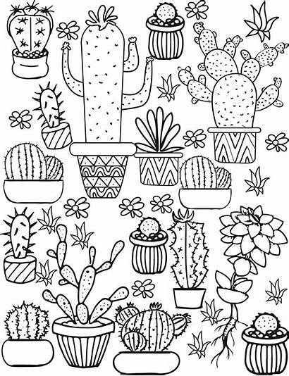 Coloring Pages Cacti