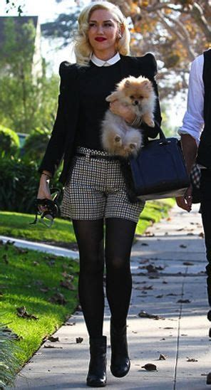 stylish stockings outfits   fall outfit