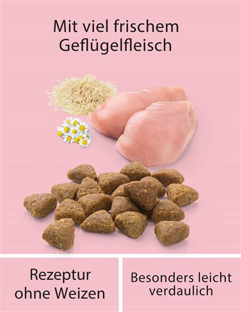 Wahre Liebe 1 5 Kg Sensible Katzen mera finest fit sensitive stomach f 252 r sensible