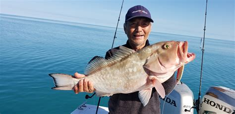 jigging florida grouper surftalk