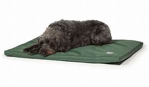 standard puppy dog duvet mattress bed waterproof nylon pet With dog bed nylon