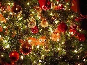 Alt til jul Dit Sorø