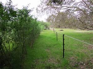 Cloturer Son Jardin Pas Cher : cl turer son jardin les diff rents types de cl tures ~ Melissatoandfro.com Idées de Décoration