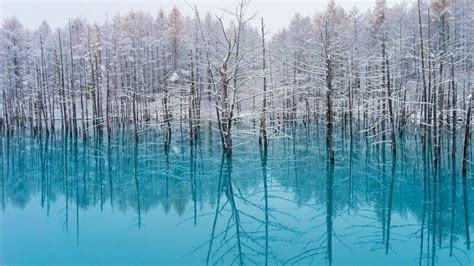 lake trees nature turquoise water snow reflection
