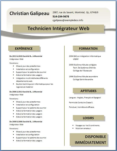 Exemple De Cv Word by Exemple De Cv 19 Exemple De Cv Info
