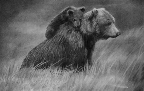 bear drawings showcase hative