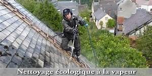 Donne Maison A Renover : nettoyer toiture ardoise fibro une maison r nover ~ Melissatoandfro.com Idées de Décoration