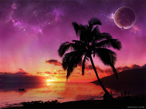 Beautiful And Amazing Sunset Wallpapers In Hd Wallpapers