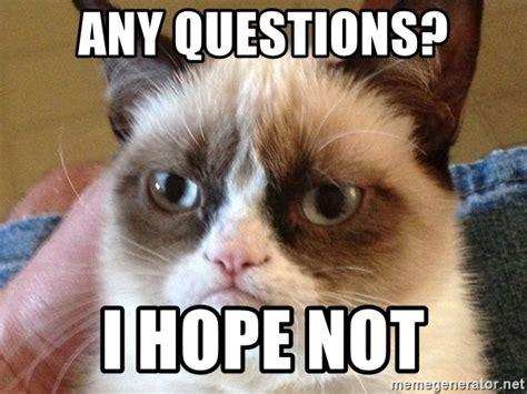 Any Questions Meme - any questions i hope not angry cat meme meme generator