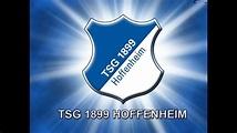 TSG 1899 Hoffenheim Torhymne ||10h - YouTube