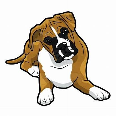 Boxer Dog Clipart Dogs Clip Vector Head