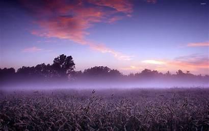 Field Foggy Wallpapers Nature Purple Desktop Mac