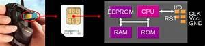 Sim Card Anatomy Source   Stepanov